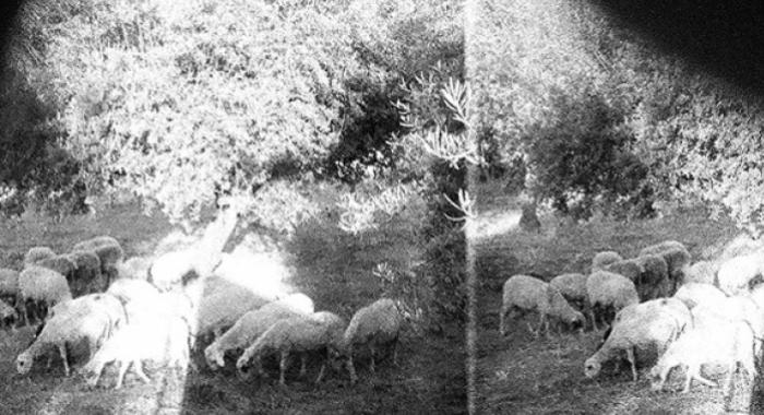 [À écouter] Godspeed You! Black Emperor annonce son sixième album : Asunder, Sweet and Other Distress