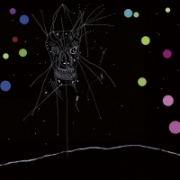 Current 93 - I Am the Last Of All the Field That Fell : A Channel (2014)
