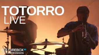Totorro (full concert) - Live @ Trans Musicales 2015