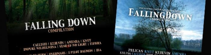 Falling Down II : premiers noms annoncés !