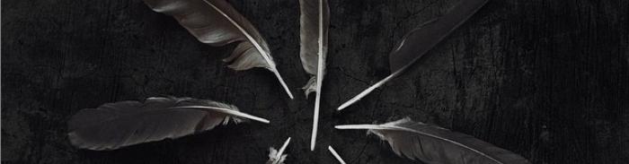 Caspian : « Dust and Disquiet », un 4e album annoncé pour la rentrée