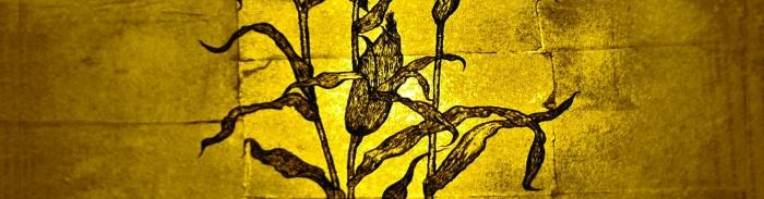 Wovenhand : The Laughing Stalk en approche le 7 septembre prochain