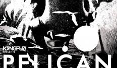 [Concours] Pelican + Wiegedood : 2 places à gagner pour le concert à Paris le 05 mai 2016