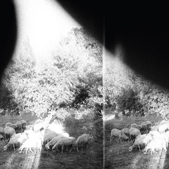 Godspeed You! Black Emperor annonce son sixième album : Asunder, Sweet and Other Distress