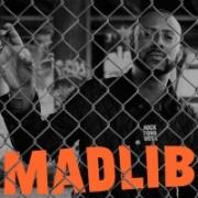 Madlib - Rock Konducta (2014)