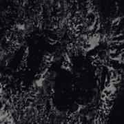 P.H.O.B.O.S. - Atonal Hypermnesia (2012)